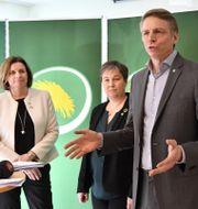 Per Bolund föreslås tar över som språkrör efter Gustav Fridolin vid partiets kongress i maj. Jonas Ekströmer/TT / TT NYHETSBYRÅN