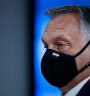 Ungerns premiärminister Viktor Orban.  Francisco Seco / TT NYHETSBYRÅN