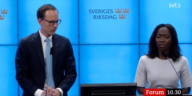 Liberalernas Mats Persson och Nyamko Sabuni.  SVT