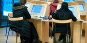 Arbetssökande sitter vid datorer på Arbetsförmedlingen Bertil Ericson / TT / TT NYHETSBYRÅN