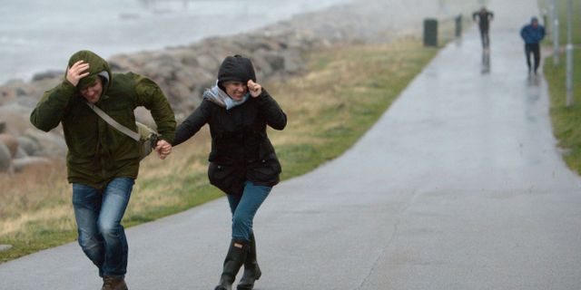 Stormigt väder i Malmö. Arkivbild. Johan Nilsson / TT / TT NYHETSBYRÅN