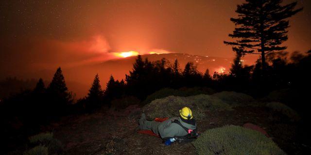 Vindar gör bränderna svårsläckta. Kent Porter / TT NYHETSBYRÅN