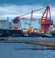 Ett av fartygen som har använts för att bygga Nordstream 2. Jens Buettner / TT NYHETSBYRÅN