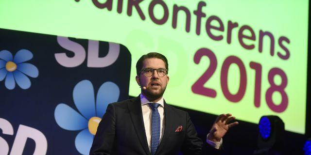 Politikerna har en naiv syn pa sverigedemokraterna 3