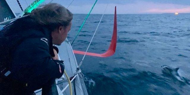 Greta Thunbergs båt omgiven av delfiner. BorisHerrmannRacing/Instagram