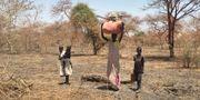 Människor på flykt i Sydsudan. Sam Mednick / TT NYHETSBYRÅN
