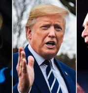 Elizabeth Warren, Donald Trump och Michael Bloomberg TT