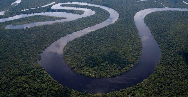 Amazonas. Rodrigo Abd / TT NYHETSBYRÅN/ NTB Scanpix