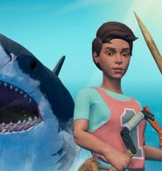 Spelet Raft. Redbeet Interactive