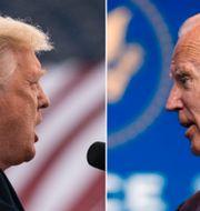 Donald Trump, Joe Biden.  TT