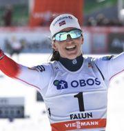 Marit Björgen. Ulf Palm/TT / TT NYHETSBYRÅN