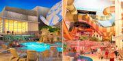 För att hänga med i den allt hårdare internationella konkurrens och attrahera besökare året vill Liseberg bygga ett nytt hotell och en vattenpark. Liseberg tar upp kampen mot Disneyland Liseberg