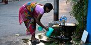 Indisk kvinna som hämtar vatten. Bikas Das / TT / NTB Scanpix