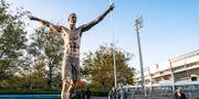 Zlatans staty i Malmö. Johan Nilsson/TT / TT NYHETSBYRÅN