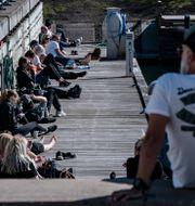 Västra hamnen i Malmö. Johan Nilsson/TT / TT NYHETSBYRÅN