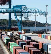 Illustrationsbild: APM Terminals exporthamn i Göteborg.  Björn Larsson Rosvall/TT / TT NYHETSBYRÅN