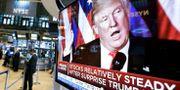 Wall Street reagerade måttligt dagen efter Trumps överraskande vinst i presidentvalet i november 2016. Sedan dess har indexen stigit kraftigt. Richard Drew / TT NYHETSBYRÅN