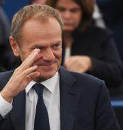 Donald Tusk. FREDERICK FLORIN / AFP