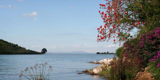 Kivu-sjön. HELENA LANDSTEDT / TT / TT NYHETSBYRÅN