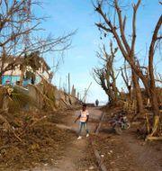 Arkivfoto: Förödelse i Dame-Marie, Haiti, efter orkanen Matthew 2016. Dieu Nalio Chery / TT NYHETSBYRÅN