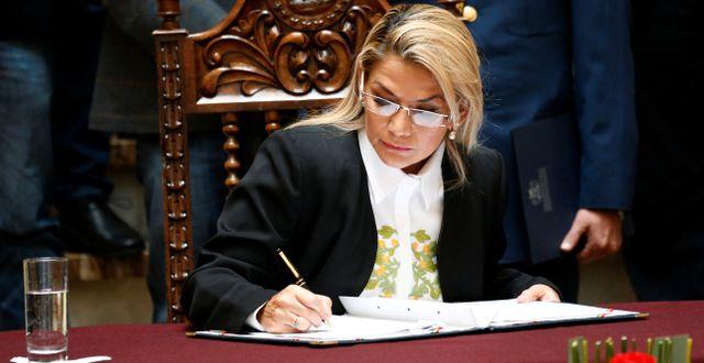 Jeanine Áñez DAVID MERCADO / TT NYHETSBYRÅN