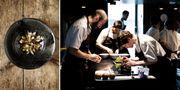 Noma har utsetts till världens bästa restaurang fyra gånger öppnar igen i februari med 40 sittplatser. Noma
