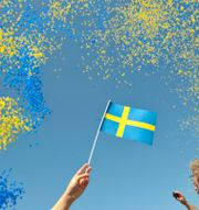 Nationaldagsfirande 2008. Maja Suslin / TT / TT NYHETSBYRÅN