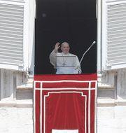 Påve Franciskus under söndagsbönen. Gregorio Borgia / TT NYHETSBYRÅN