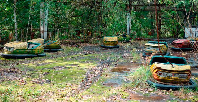 Övergivna radiobilar i Tjernobyl.  Nicole Evatt / TT NYHETSBYRÅN