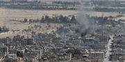 Den moderna delen av Palmyra, 10 december, 2016. © Omar Sanadiki / Reuters / TT NYHETSBYRÅN