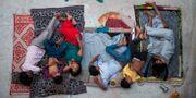 En indisk familj sover på ett hustak i New Delhi för att undkomma värmen Tsering Topgyal / TT / NTB Scanpix