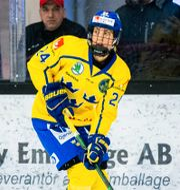 Erika Grahm.  AXEL BOBERG / BILDBYRÅN