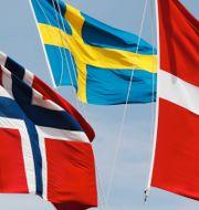Norska, svenska och danska flaggan / Astra Zenecas vaccin. TT.