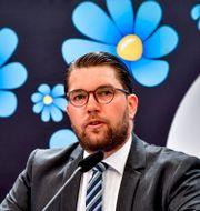 Jimmie Åkesson (SD). Jonas Ekströmer/TT / TT NYHETSBYRÅN