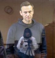 Stillbild från en film från domstolen visar Navalnyj på fredagen. TT NYHETSBYRÅN