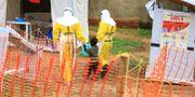 Sjukvårdare tar hand om en pojke som misstänks ha smittats av ebola. Arkivbild. Al-hadji Kudra Maliro / TT NYHETSBYRÅN