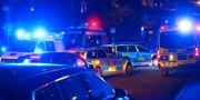 Polisinsatsen i Gröndal. Petra Lindell/TT / TT NYHETSBYRÅN