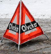 Arkivbild Johan Nilsson/TT / TT NYHETSBYRÅN