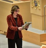 Isabella Lövin tar emot en present av SD-ledaren Jimmie Åkesson. Janerik Henriksson/TT / TT NYHETSBYRÅN