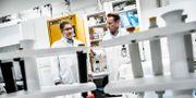 Professor Matti Sällberg, till höger, arbetar med att ta fram ett vaccin mot covid-19 tillsammans med kollegan professor Ali Mirazimi vid Karolinska institutet. Magnus Hjalmarson Neideman/SvD/TT / TT NYHETSBYRÅN