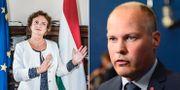 Ungerns ambassadör Lilla Makkay, Migrationsminister Morgan Johansson (S). TT