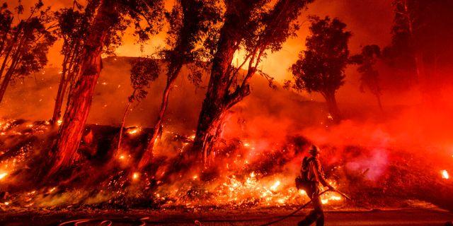 Bränderna har härjat i Kalifornien under flera veckor. Noah Berger / TT NYHETSBYRÅN