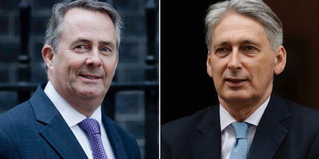 Storbritanniens finansminister Philip Hammond och handelsminister Liam Fox. TT