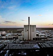 Forsmark kärnkraftsverk. Arkivbild. Tomas Oneborg / SvD / TT / TT NYHETSBYRÅN