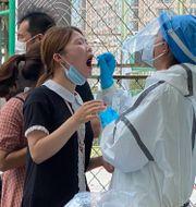 Illustrationsbild: Människor testas för covid-19 utanför en sportanläggning i Peking.  Ng Han Guan / TT NYHETSBYRÅN