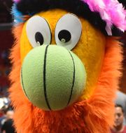 Maskotar för Toronto Raptors,  Miami Heat och Denver Nuggets TT