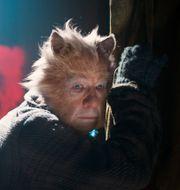"""Ian McKellen i filmen """"Cats"""". Universal Pictures / TT NYHETSBYRÅN"""