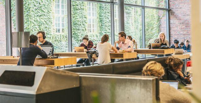 Studenter på KTH i Stockholm/Illustrationsbild.  Veronica Johansson/SvD/TT / TT NYHETSBYRÅN