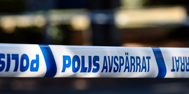 Arkivbild. Johan Nilsson/TT / TT NYHETSBYRÅN
