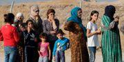 Syriska flyktingar.  Hussein Malla / TT NYHETSBYRÅN